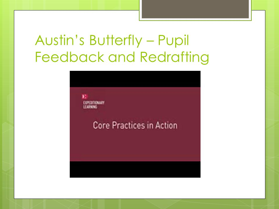 Austins Butterfly – Pupil Feedback and Redrafting