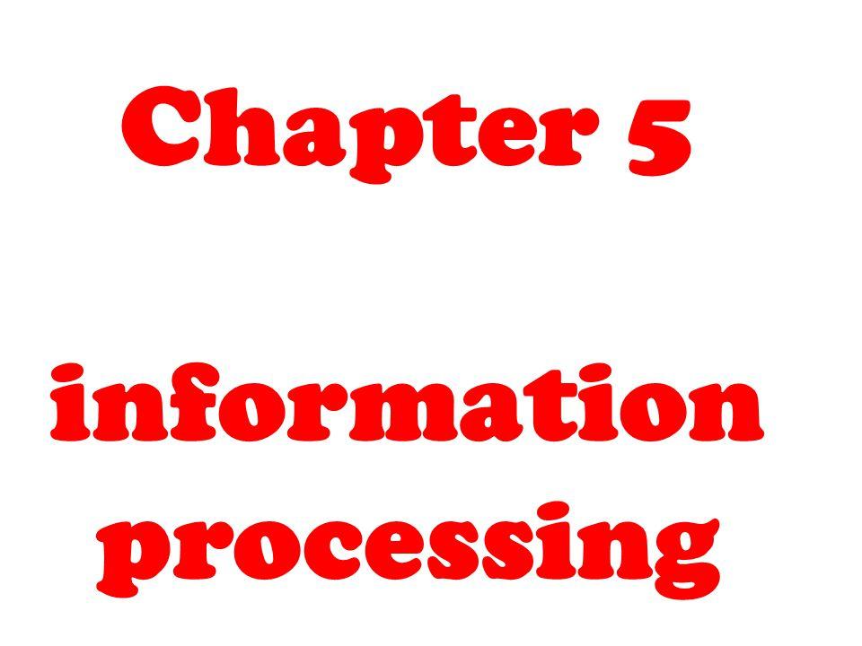 Information processing Recap: – Black box model – Welfords model CNS feedback