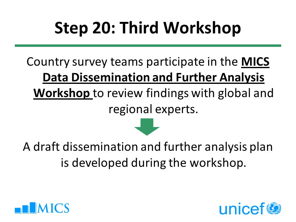 Step 20: Third Workshop Country survey teams participate in the MICS Data Dissemination and Further Analysis Workshop to review findings with global and regional experts.