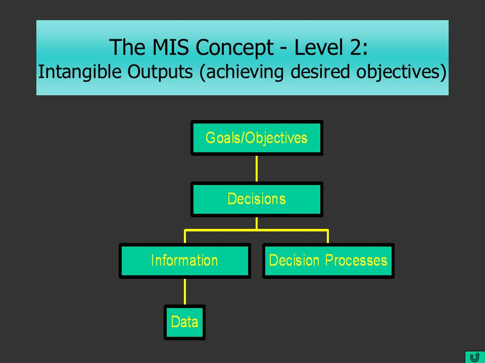 The MIS Concept - Level 2: Intangible Outputs (achieving desired objectives)