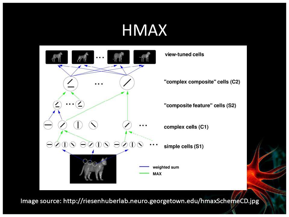 HMAX Image source: http://riesenhuberlab.neuro.georgetown.edu/hmaxSchemeCD.jpg