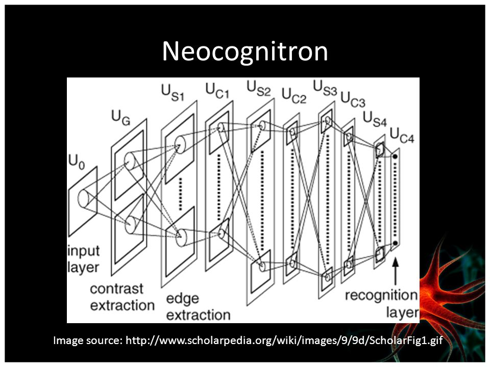 Neocognitron Image source: http://www.scholarpedia.org/wiki/images/9/9d/ScholarFig1.gif