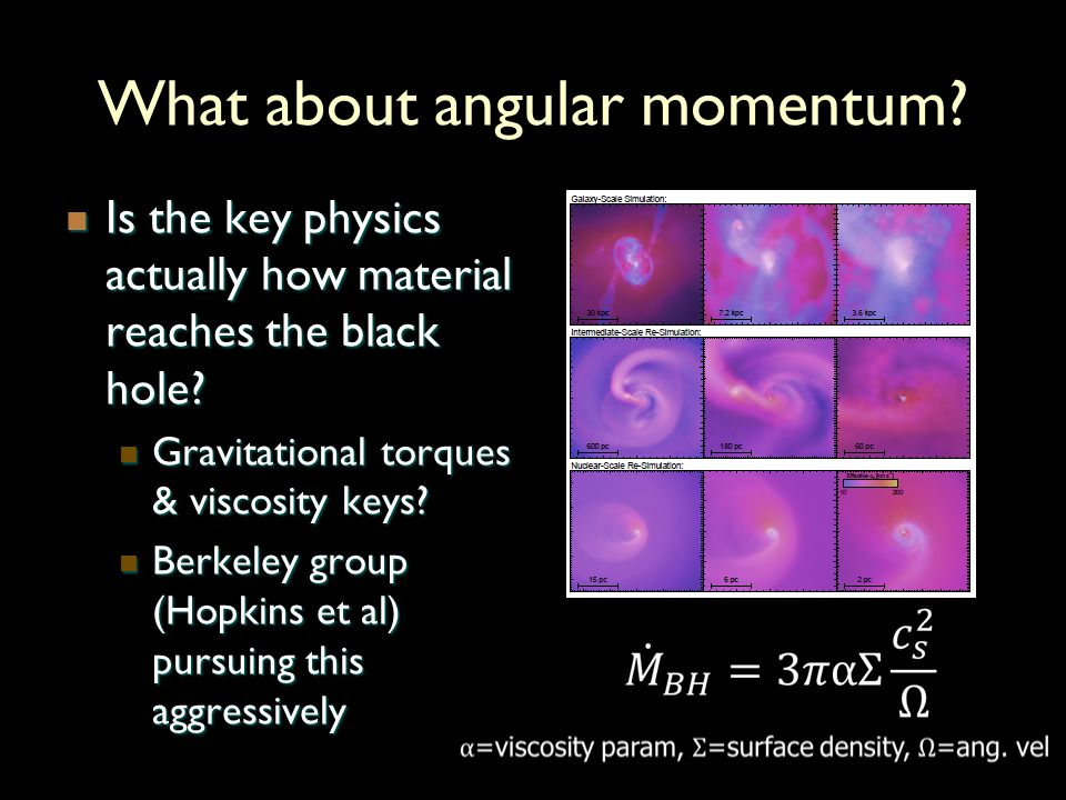 What about angular momentum.Is the key physics actually how material reaches the black hole.