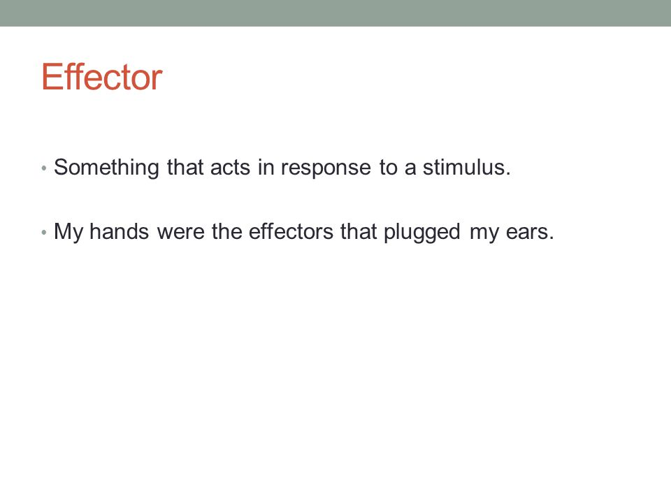Effector Something that acts in response to a stimulus. My hands were the effectors that plugged my ears.