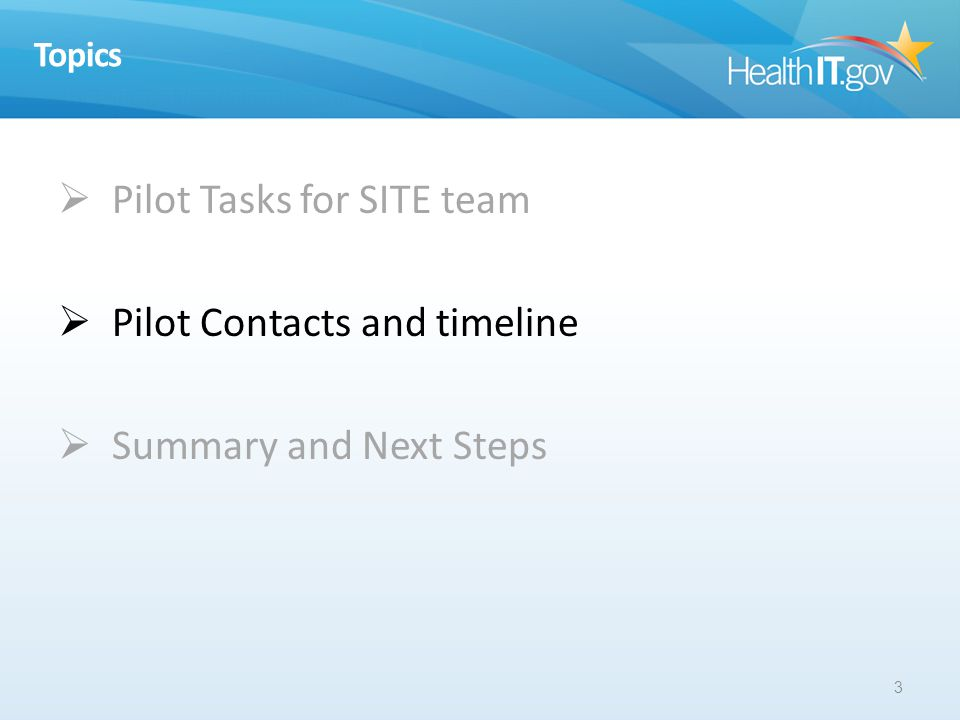 Topics Pilot Tasks for SITE team Pilot Contacts and timeline Summary and Next Steps 3