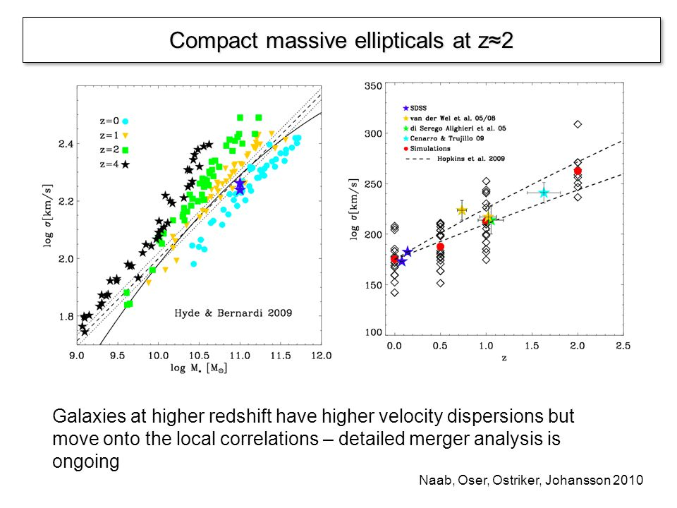 Compact massive ellipticals at z2 Galaxies at higher redshift have higher velocity dispersions but move onto the local correlations – detailed merger analysis is ongoing Naab, Oser, Ostriker, Johansson 2010
