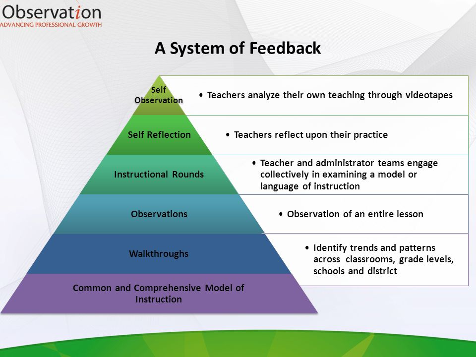 Leaders of Learning Options: Districts that have 25 or more instructional leaders may have LSI-provided district-based sessions Smaller districts or districts phasing in the system may send instructional leaders to ESA for cross-district cohorts.