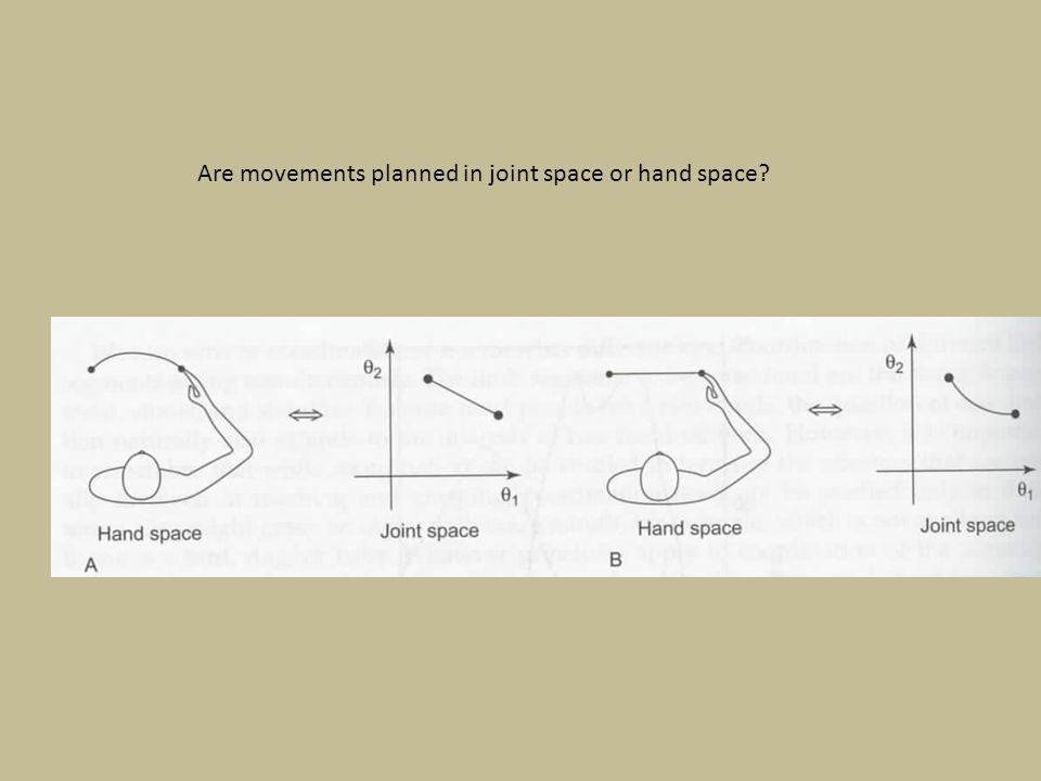Are movements planned in joint space or hand space?