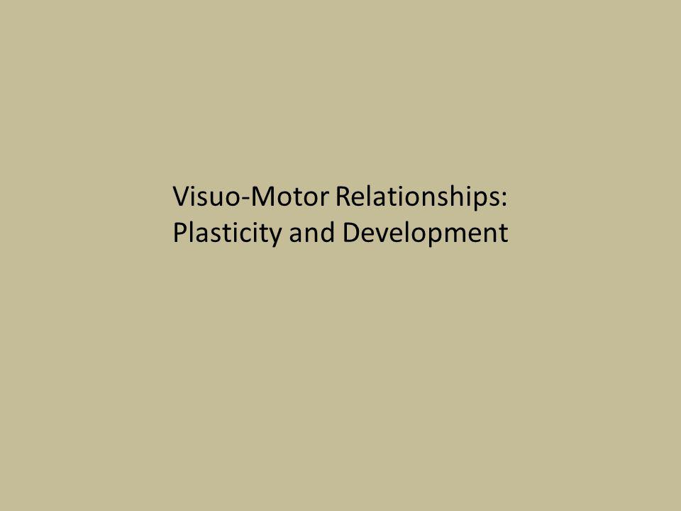 Visuo-Motor Relationships: Plasticity and Development