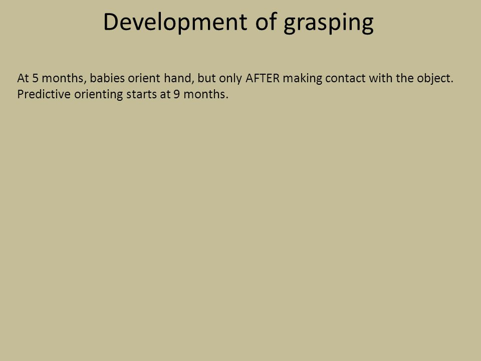Development of grasping At 5 months, babies orient hand, but only AFTER making contact with the object. Predictive orienting starts at 9 months.