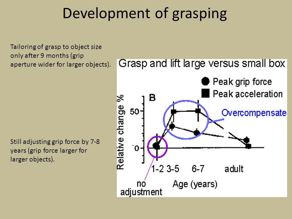 Development of grasping Tailoring of grasp to object size only after 9 months (grip aperture wider for larger objects). Still adjusting grip force by