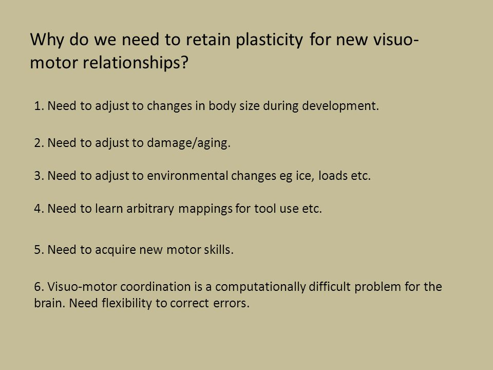 Why do we need to retain plasticity for new visuo- motor relationships? 1. Need to adjust to changes in body size during development. 2. Need to adjus