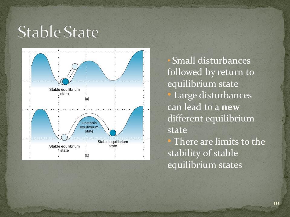 Small disturbances followed by return to equilibrium state Large disturbances can lead to a new different equilibrium state There are limits to the stability of stable equilibrium states 10