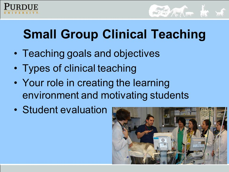 Teaching Opportunities in the Clinic Rounds –Topic rounds –Case rounds One-on-one over cases Daily interactions –Role modeling