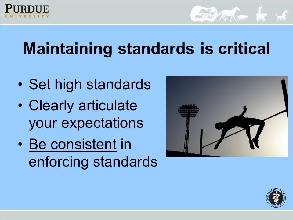 Maintaining standards is critical Set high standards Clearly articulate your expectations Be consistent in enforcing standards