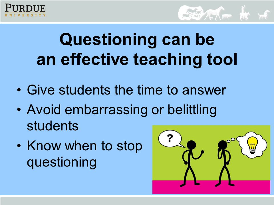 Questioning can be an effective teaching tool Give students the time to answer Avoid embarrassing or belittling students Know when to stop questioning