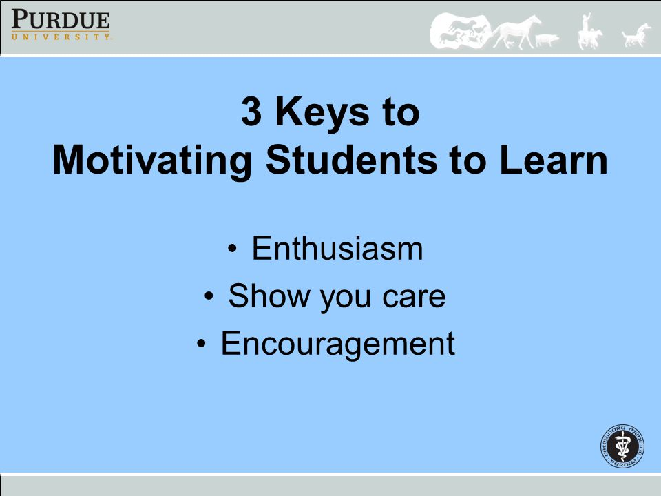 3 Keys to Motivating Students to Learn Enthusiasm Show you care Encouragement