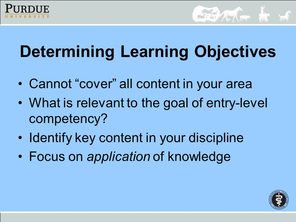 Determining Learning Objectives Focus on the overarching competencies –History-taking –Physical examination skills –Identifying problems, DDx list –Dx work-up, interpretation –Formulating treatment plans –Communications with clients, staff