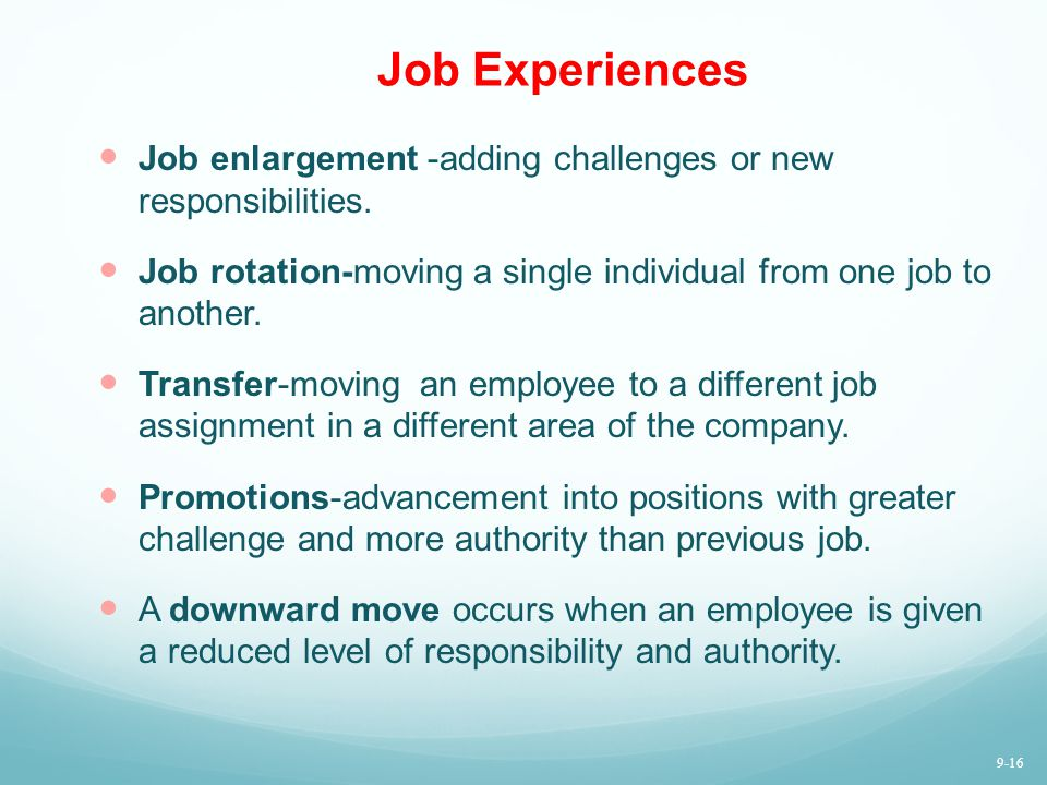 Job Experiences Job enlargement -adding challenges or new responsibilities. Job rotation-moving a single individual from one job to another. Transfer-