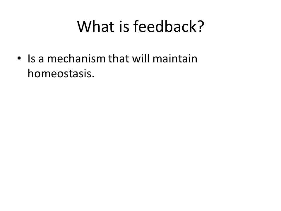 What is feedback? Is a mechanism that will maintain homeostasis.