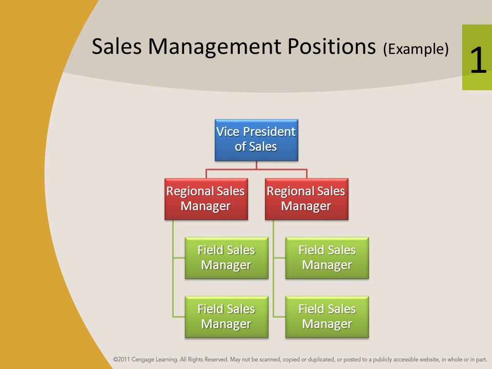 1 Sales Management Positions (Example) Vice President of Sales Regional Sales Manager Field Sales Manager Regional Sales Manager Field Sales Manager