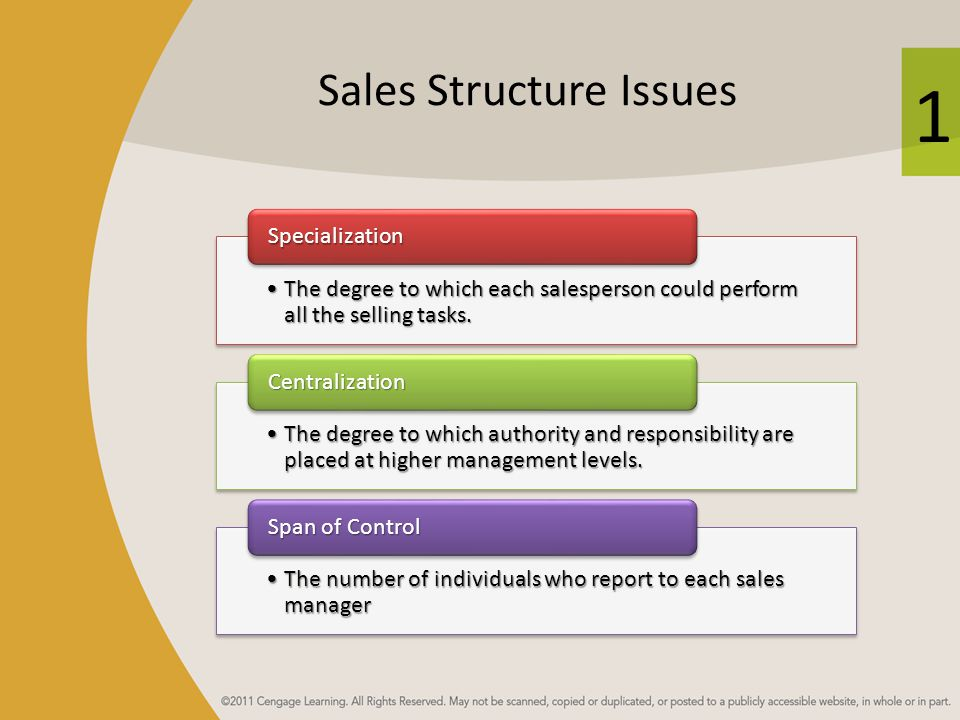 1 Sales Structure Issues The degree to which each salesperson could perform all the selling tasks.The degree to which each salesperson could perform a