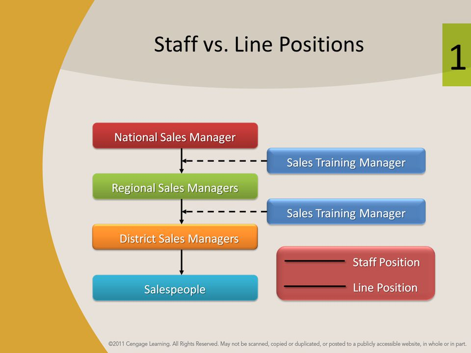 1 Staff vs. Line Positions