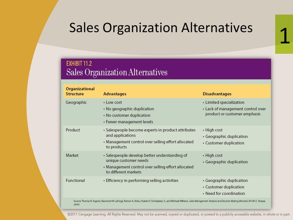 1 Sales Organization Alternatives