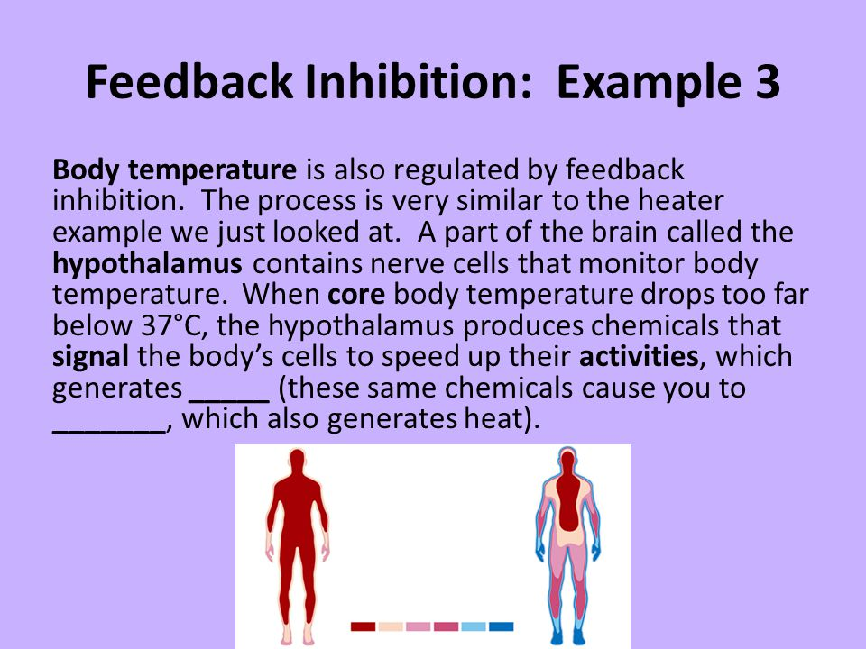 Feedback Inhibition: Example 3 Body temperature is also regulated by feedback inhibition. The process is very similar to the heater example we just lo