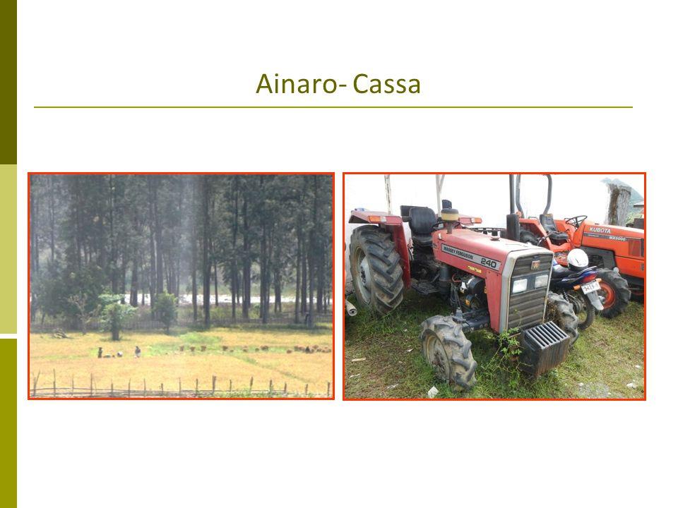 Ainaro- Cassa