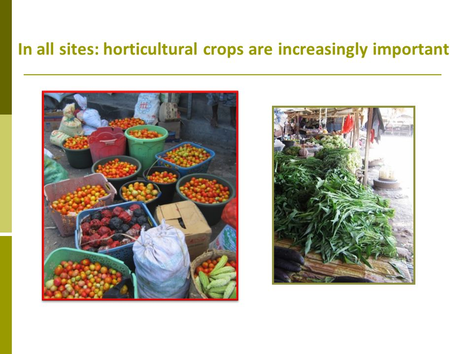 In all sites: horticultural crops are increasingly important