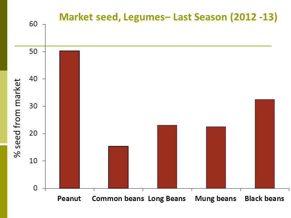 Market seed, Legumes– Last Season (2012 -13)