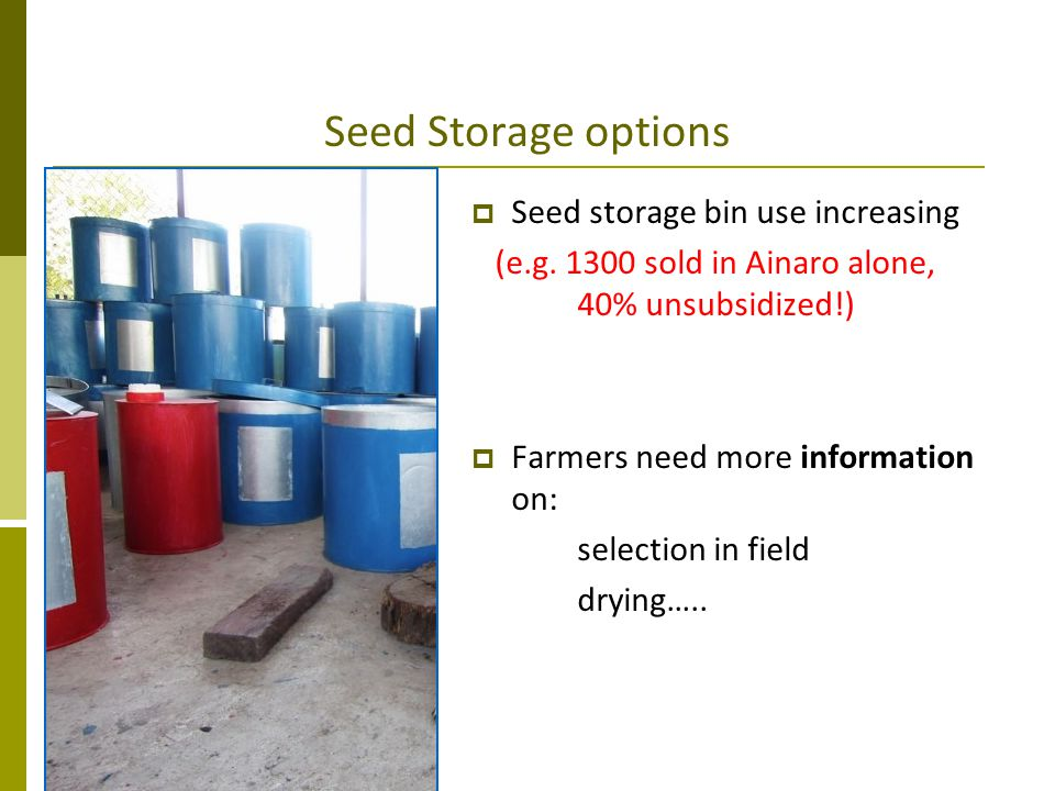 Seed Storage options Seed storage bin use increasing (e.g. 1300 sold in Ainaro alone, 40% unsubsidized!) Farmers need more information on: selection i