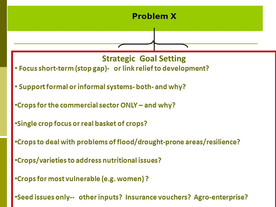 Problem X Strategic Goal Setting Focus short-term (stop gap)- or link relief to development? Support formal or informal systems- both- and why? Crops
