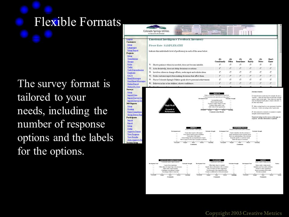Copyright 2003 Creative Metrics The survey format is tailored to your needs, including the number of response options and the labels for the options.