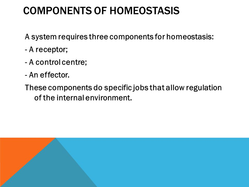 COMPONENTS OF HOMEOSTASIS A system requires three components for homeostasis: - A receptor; - A control centre; - An effector.