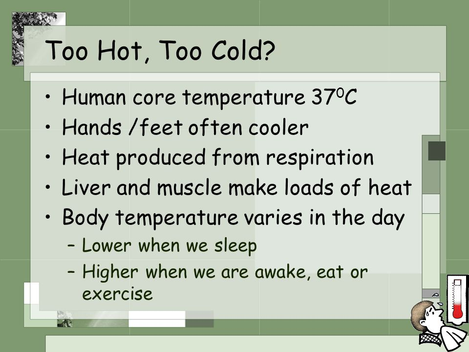 Too Hot, Too Cold? Human core temperature 37 0 C Hands /feet often cooler Heat produced from respiration Liver and muscle make loads of heat Body temp