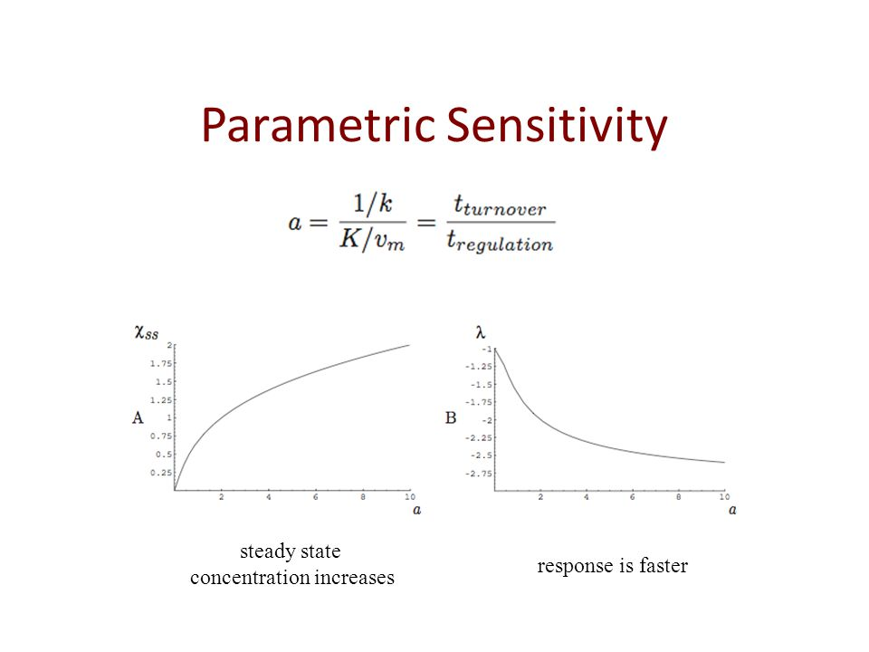 Parametric Sensitivity steady state concentration increases response is faster
