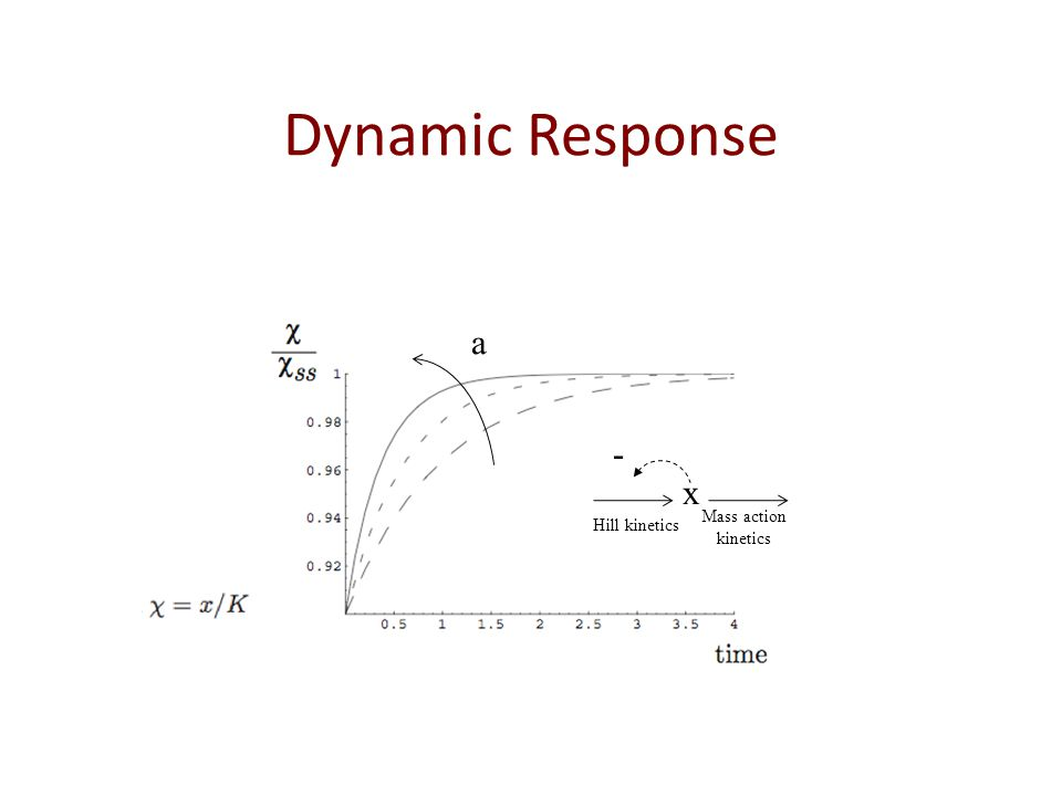 Dynamic Response x - Hill kinetics Mass action kinetics a