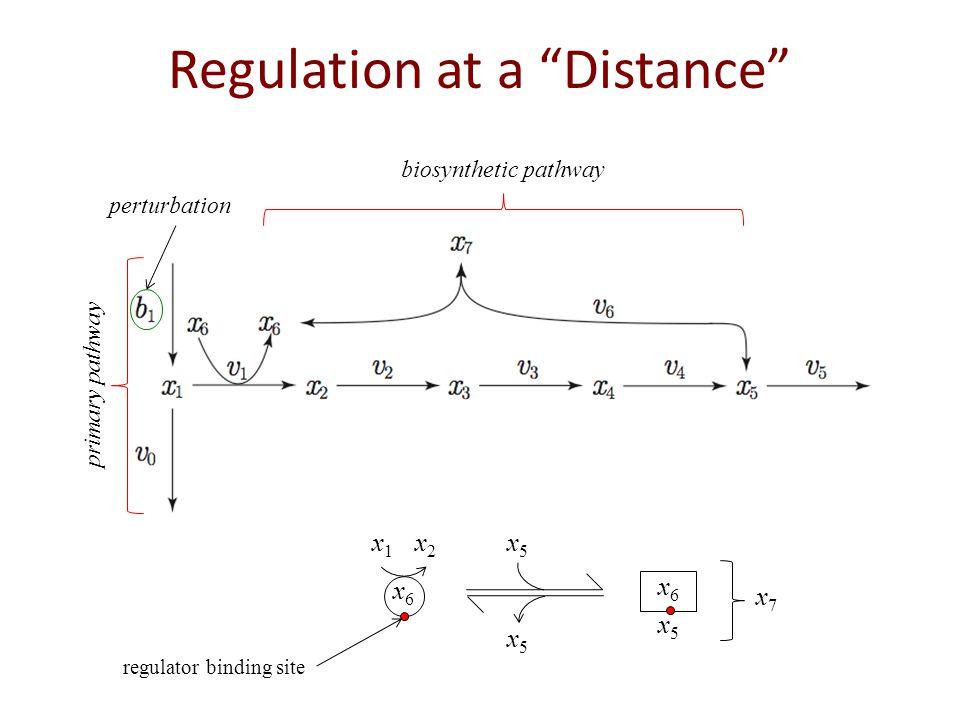 Regulation at a Distance primary pathway perturbation biosynthetic pathway x6x6 x1x1 x2x2 x5x5 x5x5 x5x5 x6x6 x7x7 regulator binding site