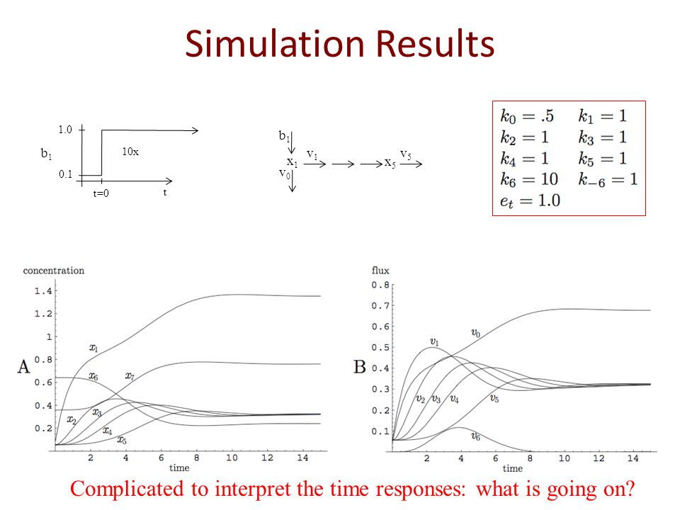 Simulation Results x1x1 x5x5 b1b1 v0v0 v1v1 v5v5 10x 1.0 0.1 t=0 t b1b1 Complicated to interpret the time responses: what is going on?
