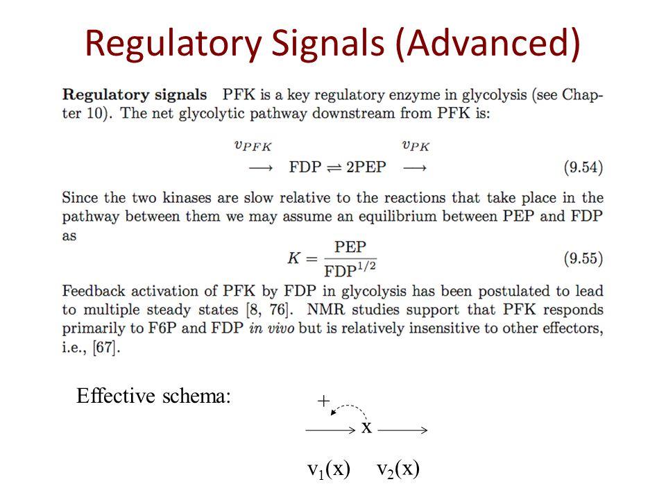 Regulatory Signals (Advanced) x + Effective schema: v 1 (x) v 2 (x)
