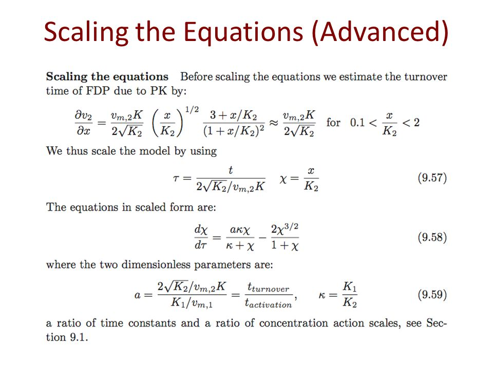 Scaling the Equations (Advanced)
