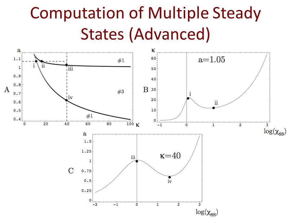 Computation of Multiple Steady States (Advanced)