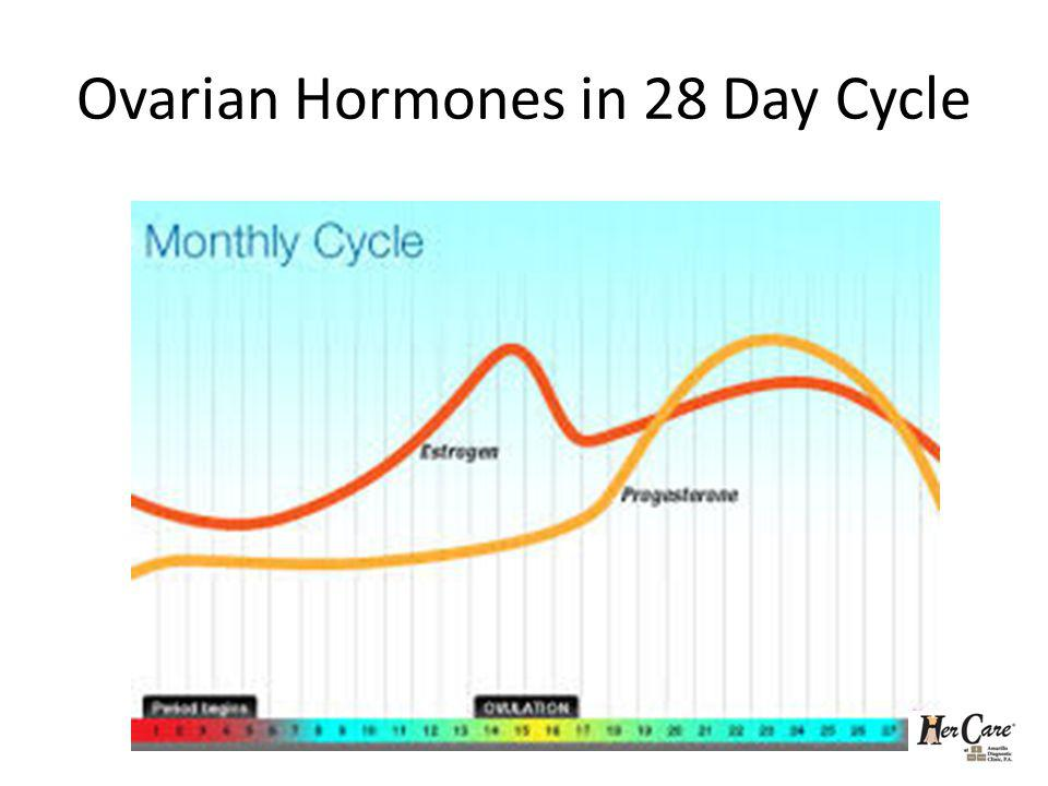 Ovarian Hormones in 28 Day Cycle