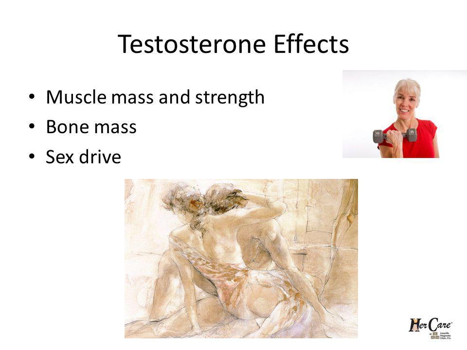 Testosterone Effects Muscle mass and strength Bone mass Sex drive