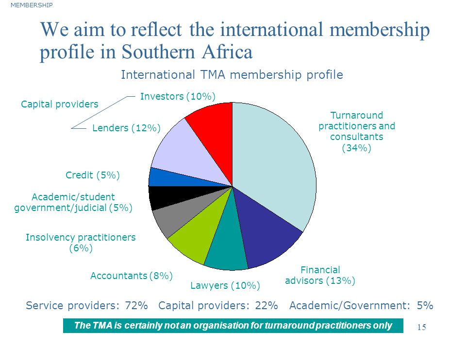 ©2004 Deloitte & Touche 15 We aim to reflect the international membership profile in Southern Africa MEMBERSHIP Turnaround practitioners and consultan