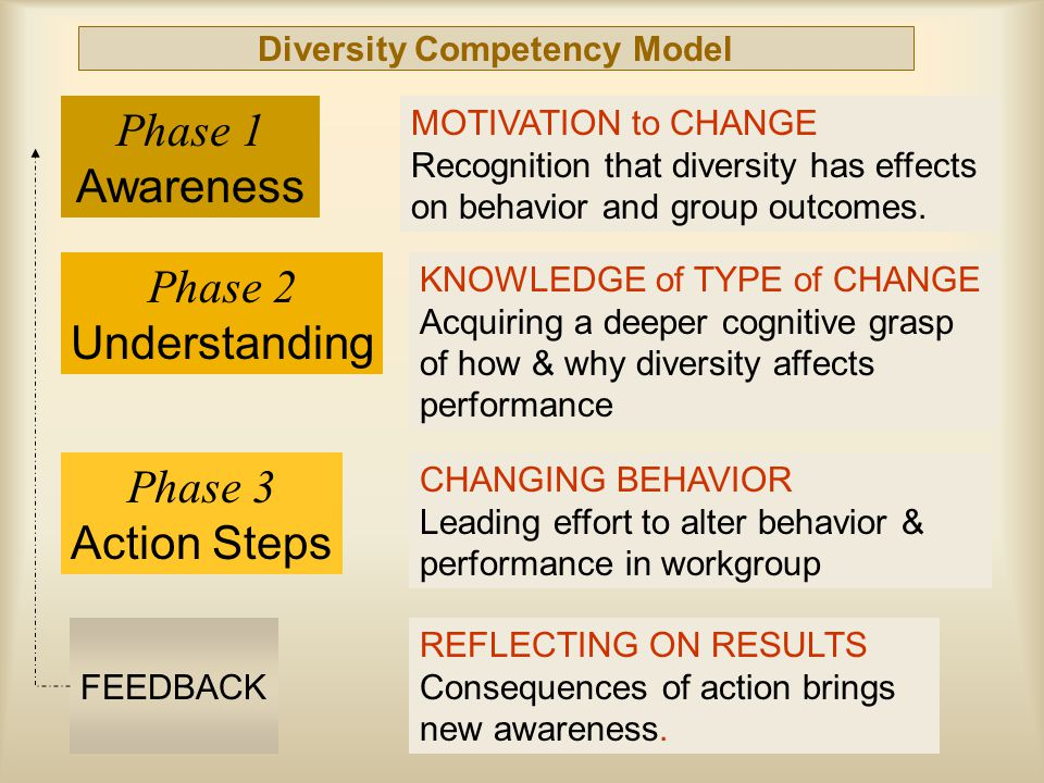 Diversity Competency Model Phase 2 Understanding Phase 3 Action Steps FEEDBACK Phase 1 Awareness MOTIVATION to CHANGE Recognition that diversity has effects on behavior and group outcomes.