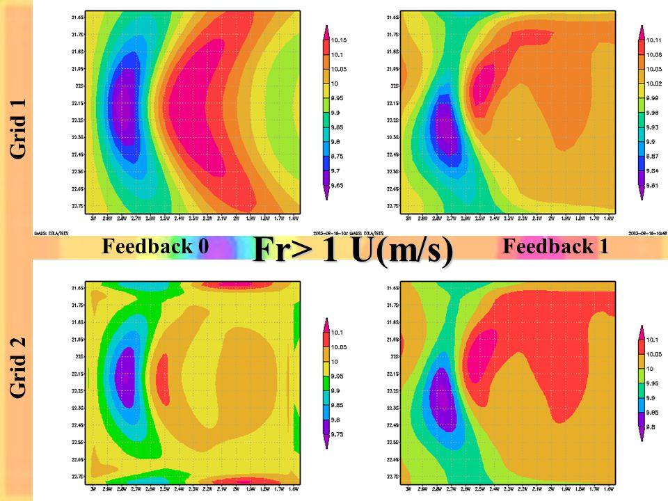 Grid 1 Grid 2 Feedback 0Feedback 1 Fr> 1 U(m/s)
