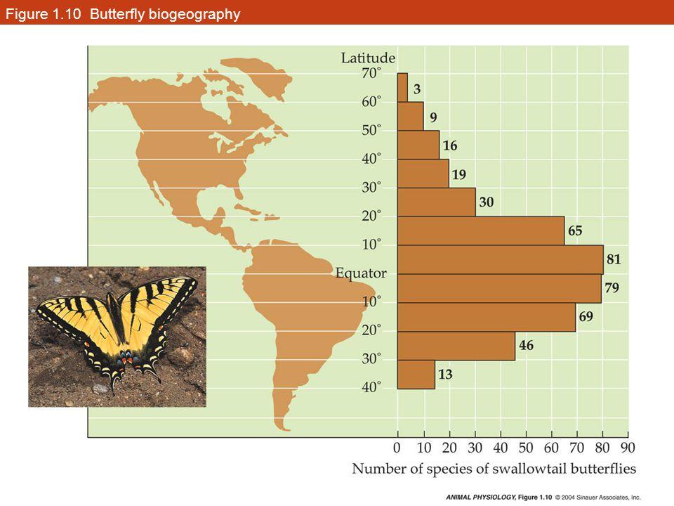 Figure 1.11 A thermophilic (heat-loving) lizard common in North American deserts